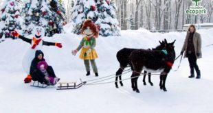 Список ивентов: как провести выходные 20 и 21 января в Харькове