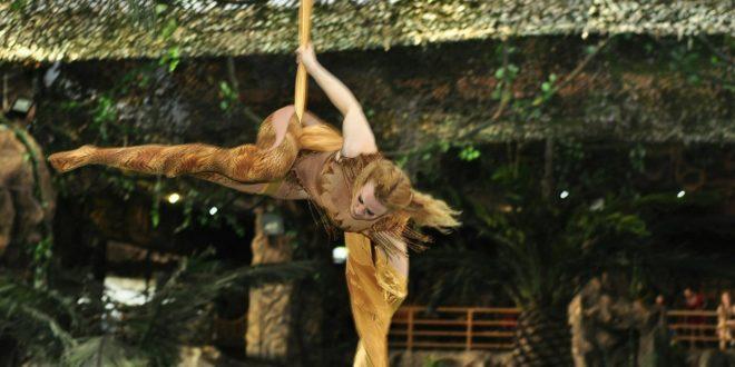 Марина Виноградова. Артистка цирка, тренер по по воздушной гимнастике