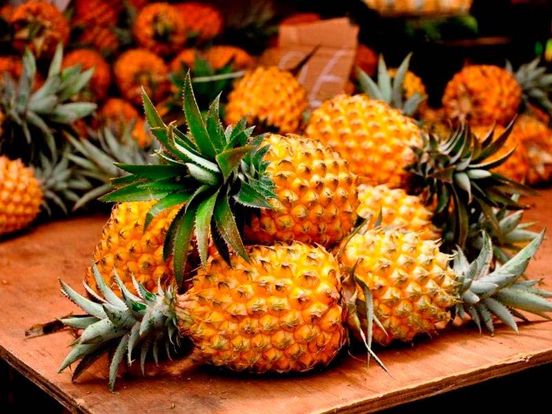 """""""Я куплю вам ананасы из кирпичей"""": Кернес резко высказался о закупках зоопарка"""