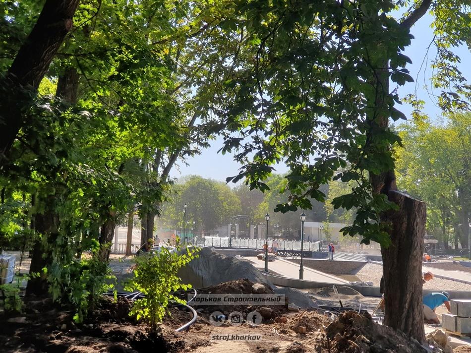 Как проходит реконструкция сада Шевченко