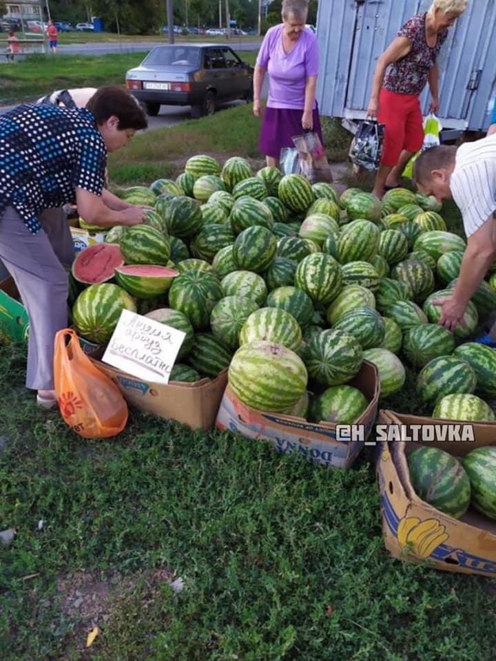 В Харькове бесплатно раздают арбузы