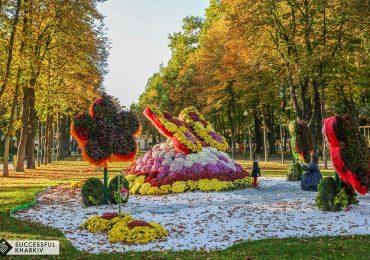 Как провести свои выходные в Харькове: список событий на 12 и 13 октября