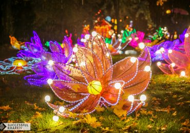 Харьков зажигает огни: что ждет посетителей Фестиваля гигантских китайских фонарей