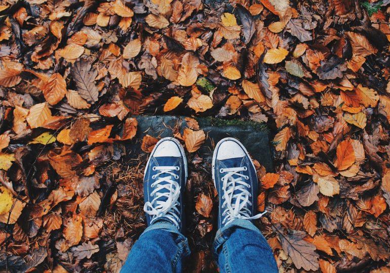 Куда пойти на выходных в Харькове: список мероприятий на 16 и 17 ноября