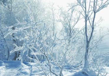 Синоптики рассказали, как долго в Украине продлятся сильные морозы