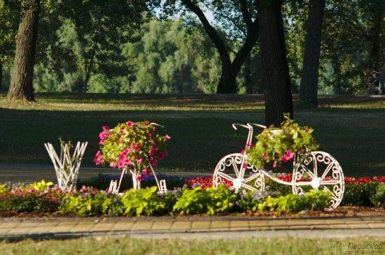 Київ потрапив до рейтингу найзеленіших міст планети