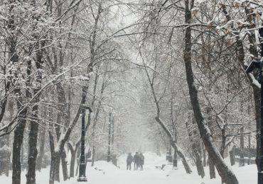 На Киев надвигается мощный снегопад